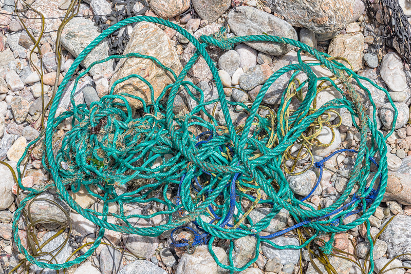 Twisted rope collected from the seaweed strand line of Petit Port on Guernsey's south coast on the 21st May 2021