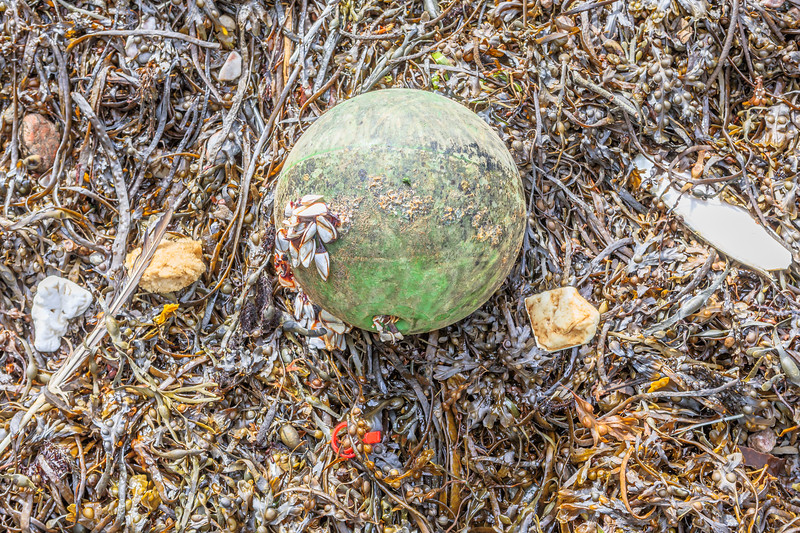 Plastic float, foam pieces, and piece of wax washed up at Petit Port on Guernsey's south coast on 18th October 2019