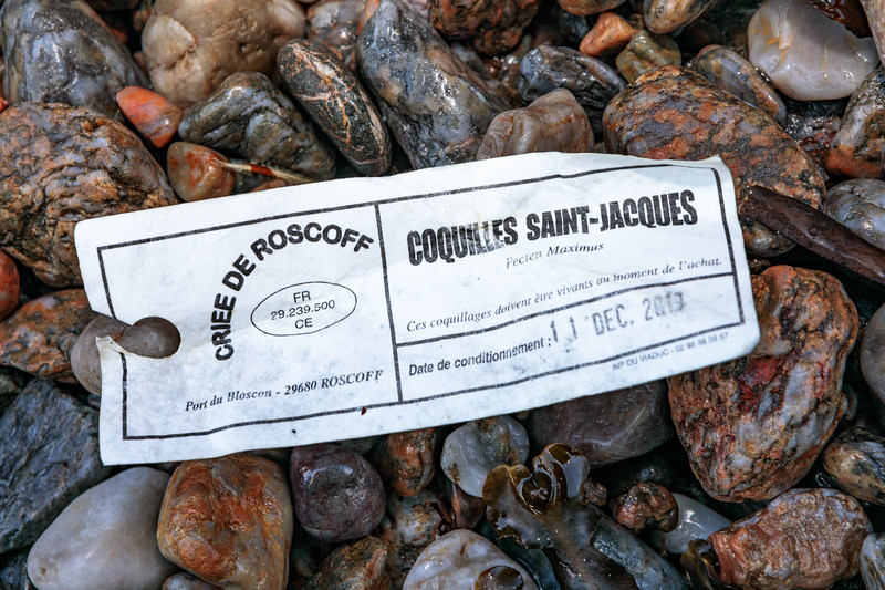 French scallop bag tag from Criee de Roscoff washed up at Petit Port on Guernsey's south coast on 12th January 2020
