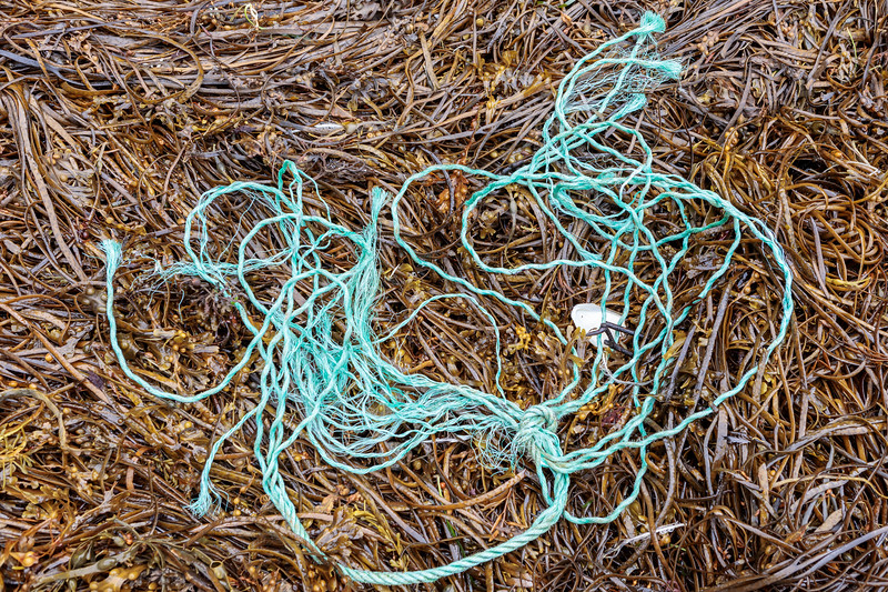Rope and twine washed up at Petit Port on Guernsey's south coast on 25th September 2019