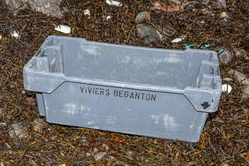 A plastic fish box washed up at Petit Port prior to 11th January 2020