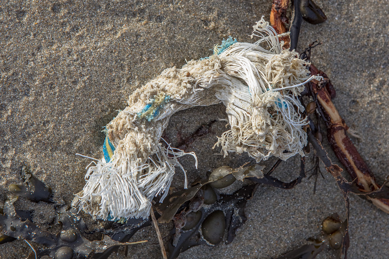 Thick rope with cut ends at Petit Port on Guernsey's south coast on 16th February 2021