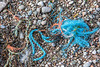 Frayed rope washed up at Petit Port on Guernsey's south coast on 11th February 2020