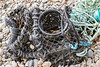 Damaged parlour pot with a long length of twisted rope washed up at Soldiers Bay on Guernsey's east coast