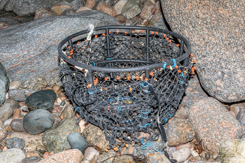 Part of an inkwell shaped crab pot washed up at Petit Port on Guernsey's south coast on 29th December 2018