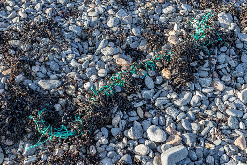 Polyethylene netting in a seaweed strand line on Belle Greve Bay on Guernsey's east coast on 12th February 2021