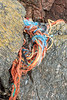 Trapped commercial fishing litter in the western boulder field on 19th August 2020