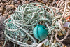 Length of rope with ABS plastic float attached to a parlour pot that washed up at Soldiers Bay on Guernsey's east coast