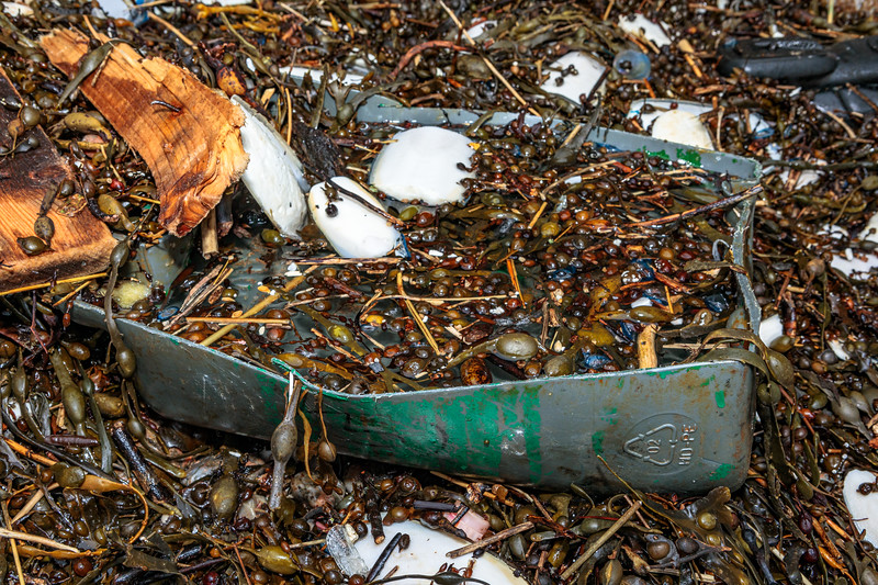Cut in half Castrol jerry can at Petit Port on Guernsey's south coast on the 22nd February 2020