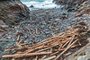 Planks of wood from the MV Koningsborg cargo spill at Petit Port on Guernsey's south coast on the 10th January 2016