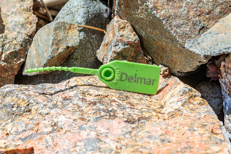Delmar plastic security tag washed up at Petit Port on Guernsey's south coast on 8th May 2020