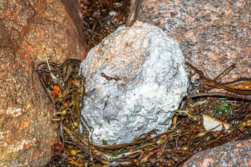 Large lump of greasy, friable material washed up at Petit Port on Guernsey's south coast on 4th November 2019