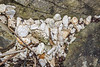 Polystyrene litter on the shore at Pleinmont on Guernsey's south west coast 5th February 2021