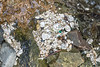 Accumulation of polystyrene on the shore at Pleinmont on Guernsey's south west coast on 5th February 2021