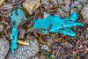 Disintegrating blue plastic or rubber glove on the Pleinmont sea shore on 5th February 2021