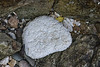 Large piece of eroded polystyrene on the Pleinmont sea shore on Guernsey's south west coast on 5th February 2021