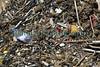 Sicily Avola beach litter plastic bottles styrofoam 020410 ©RLLord 1393 smg