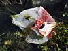 QE II SE corner Checkers Express plastic bag litter 010607 0022 smg