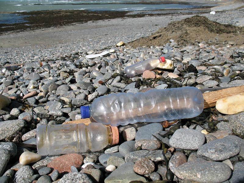Rocquaine beach plastic styrofoam litter 120308 3689 smg