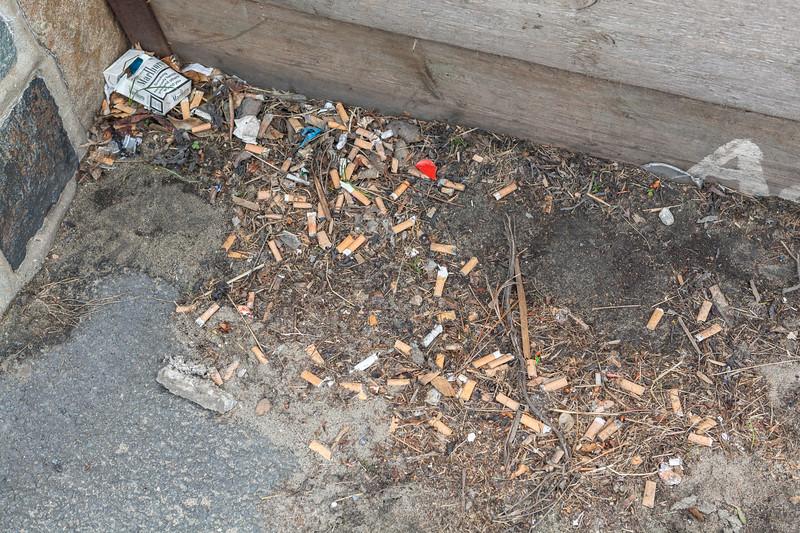 Les Banques cigarette litter 120513 ©RLLord 9447 smg