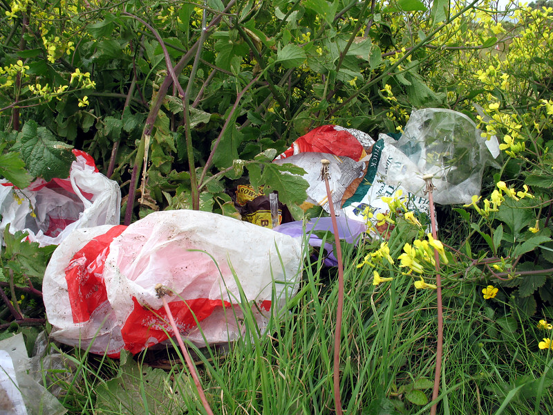 wind blown plastic bags nr Mont Cuet 050607 260 smg