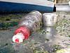 QE II SE corner plastic bottle litter 010607 008 smg