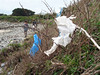 Wind blown litter caught in brambles at Champ Rouget beach, Chouet on Guernsey's north coast on 27th April 2008