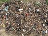 Saline Bay path plastic litter 260408 4413 smg