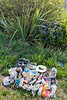 Residential litter collected from Les Banques lookout on Belle Greve Bay on Guernsey's east coast on 25th June 2020
