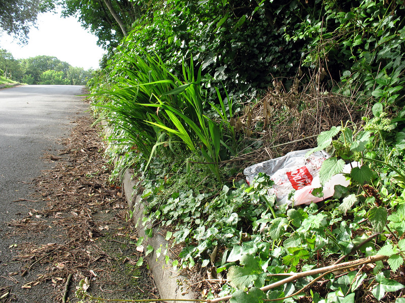 Plastic bag Fort George 060707 8894 smg