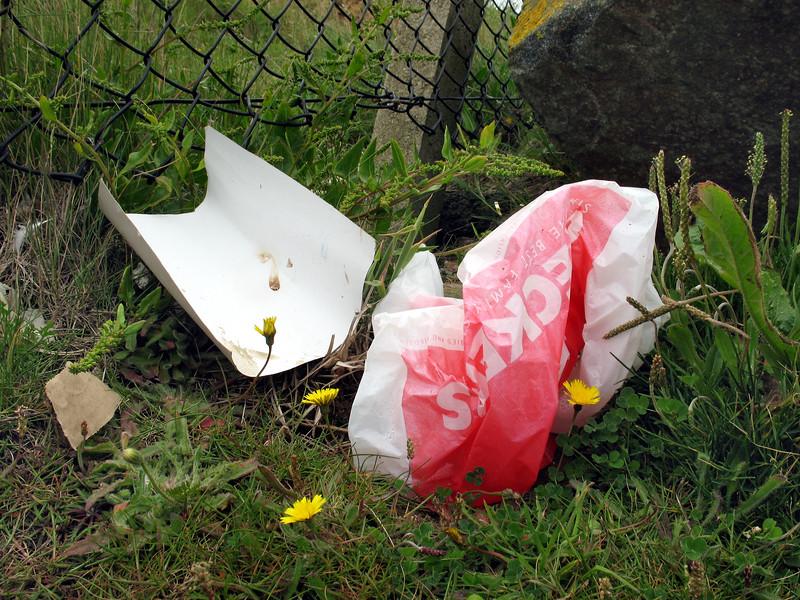 wind blown plastic bags nr Mont Cuet 050607 251 smg