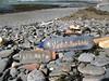 Rocquaine beach plastic styrofoam litter 120308 3690 smg