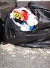 seagull pecked rubbish bag Hautville 150605 605