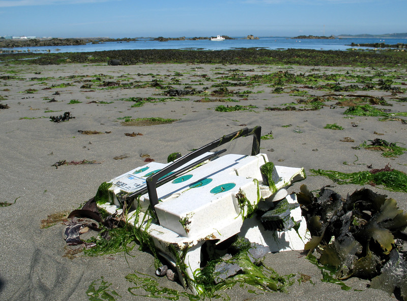 Battery litter on the Belle Greve Bay sea shore, St Peter Port, Guernsey on 2nd June 2007