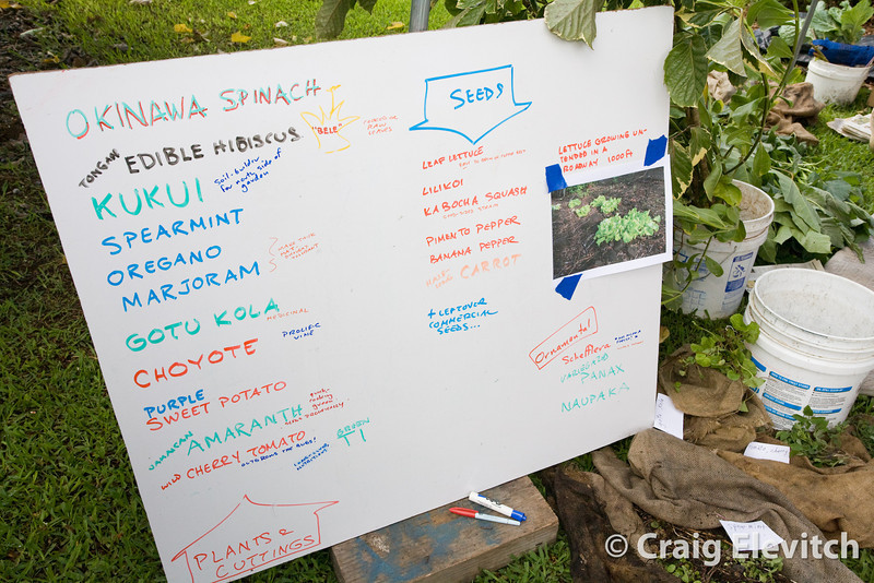 One farmer's list of plants for sharing.