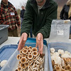 Mark Lumpe describes his experiences growing mushrooms.