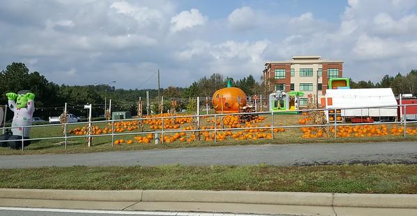 Pumpkin Patch Suwanee GA (2)