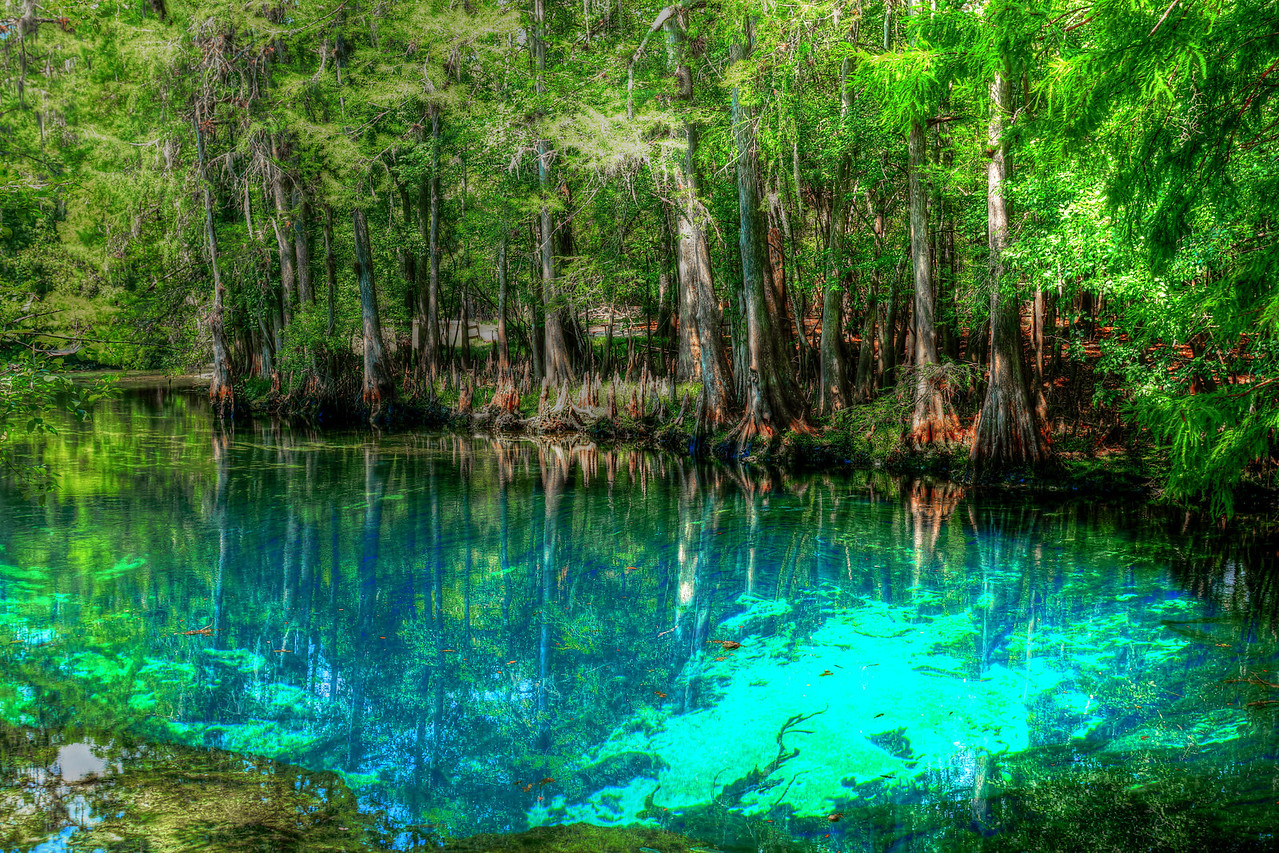 Point of Outflow of Manatee Spring