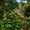 Incredible gardens with mature trees