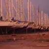 rows of masts in dry storage