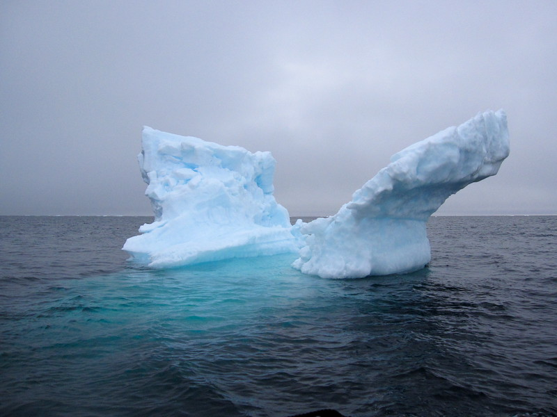 Iceberg with wings!