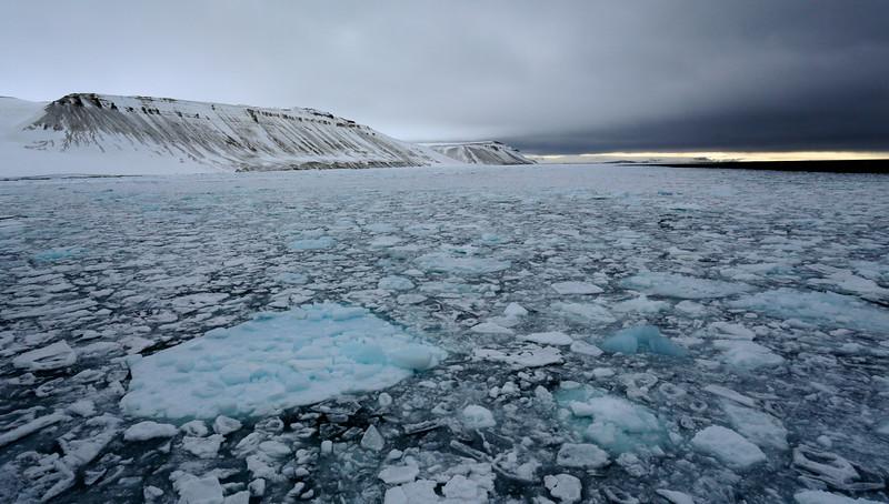 Pack ice in Palanderbukta