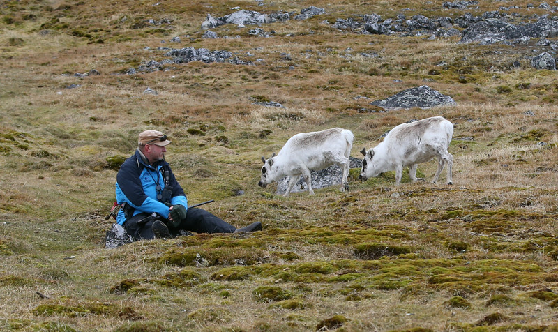 John and Svalbard reindeer at Cape Millar