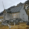 Staff hut at Camp Millar built in 1910