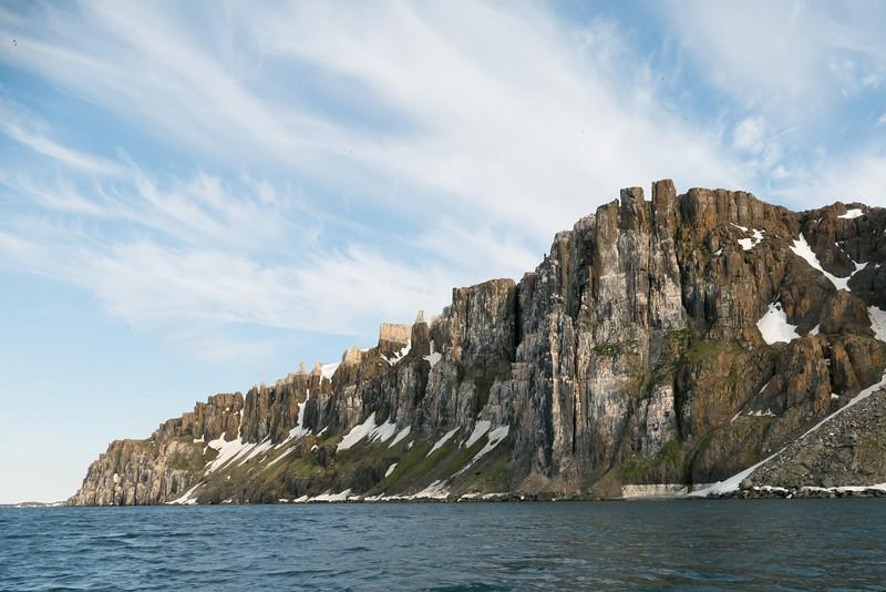 Brunnich's Guillemots in cliffs at Alkefjellet