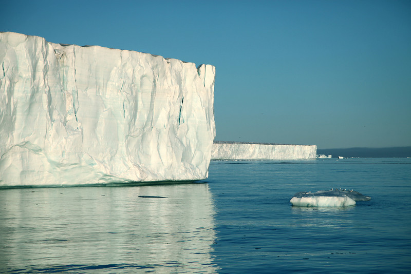 The ice front of Brasvelbreen