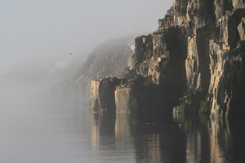 The bird cliffs at Alkefjellet