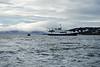 Shipboard_Polaris_2018_Norway_0041