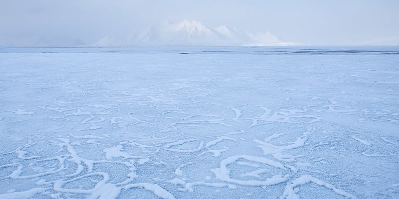 11.) Eventually, the ice develops into a continual surface.