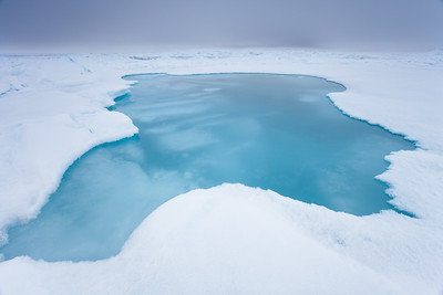 Melt Pond in Sea Ice